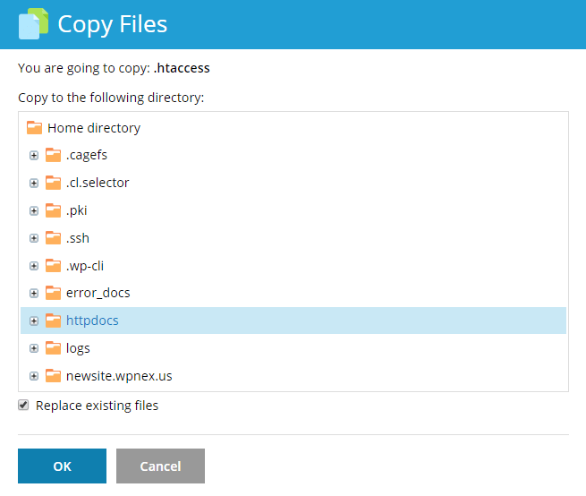 File Manager Copy Files