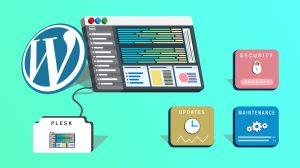 Plesk WordPress Toolkit Guide